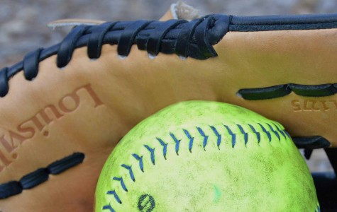 Softball Continues Streak