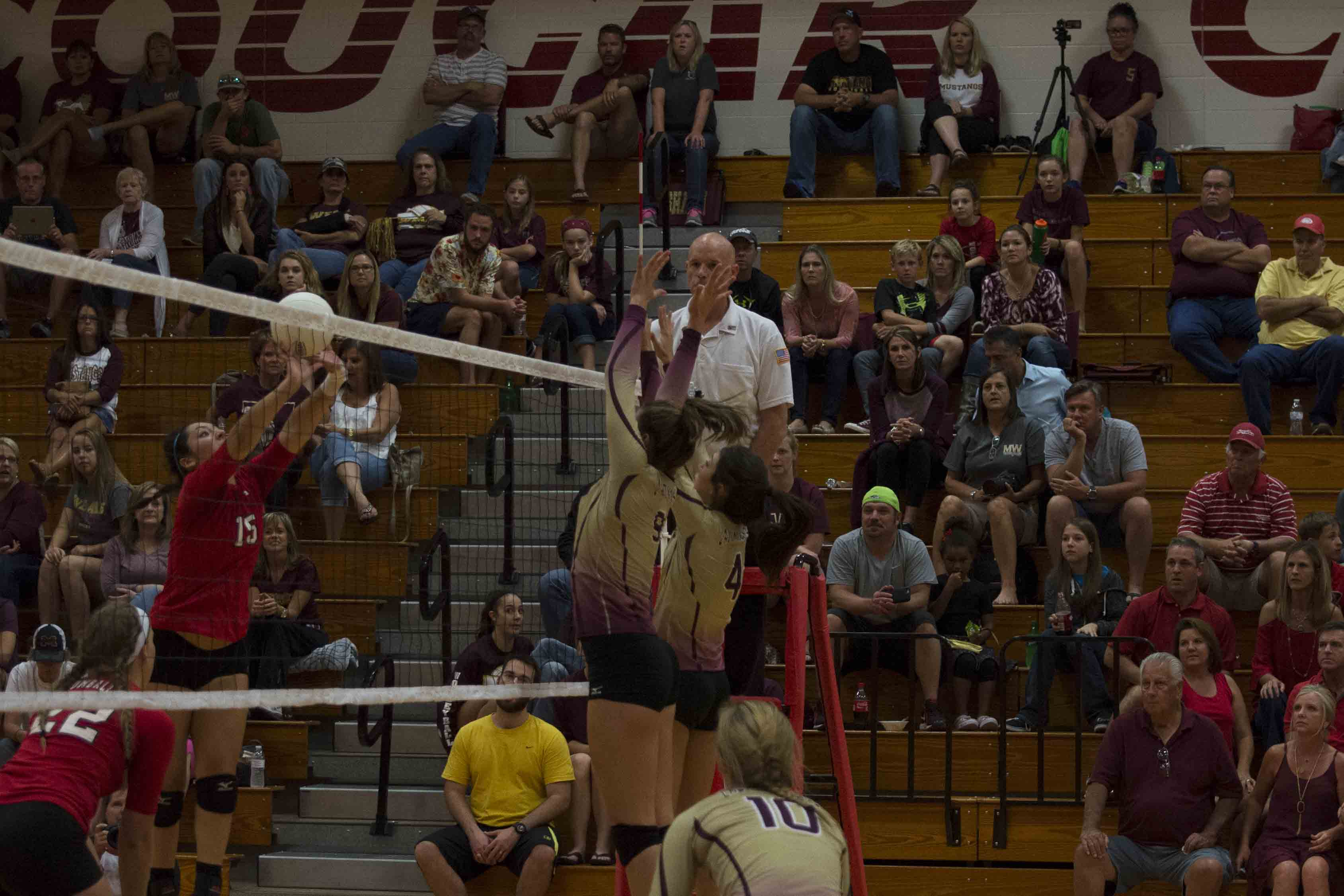 Volleyball+sets+Win+over+Cougars